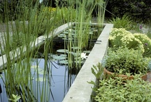 Landscaping Design Ideas / Here we share inspiration for landscaping projects of all sizes and budgets. Follow this board for hardscaping ideas, borders, pathways, raised beds and more.  / by HGTVGardens
