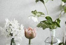 \botanic/