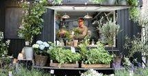 \garden shop/