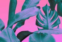 COLOR COLOR COLOR // / Color everywhere, #design #color