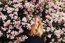 FLORES + SEEDS + PLANTS //