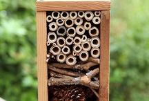 Složitější hmyzí doměčky