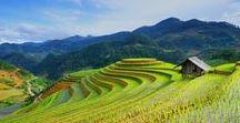 Sa Pa - Norte Vietnam / Excursiones y senderismo por el norte de Vietnam #trekking #vietnam #sapa http://aptviajes.asia/excursiones-vietnam/sapa