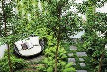 Zahrádka jako dlaň / I malé zahrady mohou být krásné, podívejte, co se do nich všechno vejde.