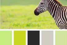 Colorizate