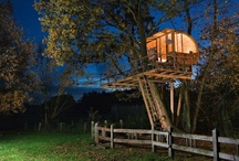 {Architecture} Tree Houses