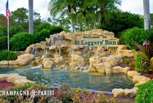 Boca Raton Real Estate / Boca Raton combines the best of both worlds with its central location in Palm Beach County. Boca Raton boasts small town charm combined with seemingly endless beaches and parks to explore. On this board you will find everything Boca Raton Real Estate has to offer.