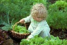 Children garden too