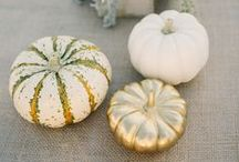 MWF Inspiration | Precious little pumpkins / Decor, snack, sweet treat. These humble little vegetables really do create the perfect styling accessory for your big day.