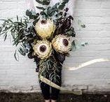 MWF | Hampshire Florists / The ultimate Hampshire Florists.