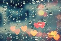 rain / by Heather Siddiqui