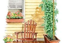 Gardening / by Donna Abercrombie