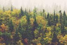 Yukon Theme