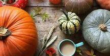 autumn vibes. / inspiring fall photography