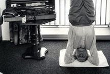 Yoga and anatomy / Iyengar yoga, anatomy and therapy