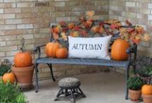 fall decorations / by Pam Wright