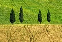 Toscana / Tuscany
