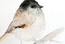 Aq - birds