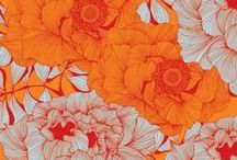Floral Print | Orange / Floral Print | Orange