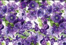 Floral Print | Purple / Floral Print | Purple