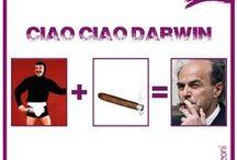 Ciao Ciao Darwin