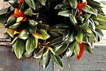 Wreath Making / Deck your halls with a beautiful, fragrant—handmade—wreath.