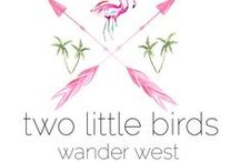 let's blog / pictures from our two little birds wander west blog //