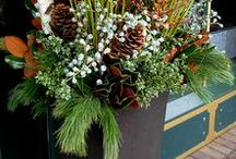 Holiday/Winter Containers / UM Director of Landscape Services Jeff McManus shares tips for using native materials to create original container gardens for the holiday season or all winter long. Wed., Nov. 9. $10 fee. Link to our Communiversity website is in the profile header.