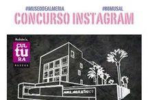 Actividades del Museo de Almería / Museum of Almería events / (Otoño/Invierno 2013-2014) / (Autumn/ Winter 2013-2014)