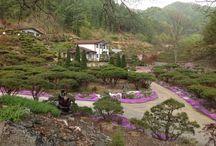 My Home / Kangwon-do Korea