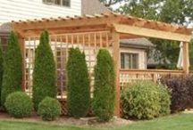 Pergola Ideas / Potential builds for Jason. / by Lauren Staley