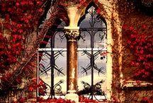 windows and doors/doorways