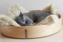 Couchage lit design pour chat ANELLO Chêne clair by MiaCara