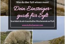 Deutschland / Plane deine Route durch Deutschland und besuche dabei die schönsten Städte des Landes.  Mehr Infos findest du hier: http://kulturtaenzer.com/deutschland/