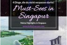 Singapur / Du möchtest einmal nach Singapur? Dann findest du hier alle Infos, die du für deine nächste Reise dorthin brauchst. #singapore #mustsee