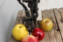 The Good Apple / Good Apples.  Selecting a favorite apple image each day