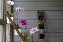 Flores y Floreros Adorables