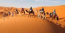 Desiertos fascinantes