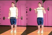 Bicep Workout / Bicep exercises and workouts