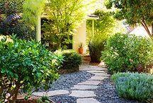 Gardening, home, design