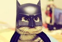 Batman rules! :]