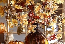 Everything Autumn / Fall / Thanksgiving / by Tricia Freehling