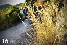 Fotografo di Matrimonio a San Piero Chiesa San Nicolò. Isola d'Elba / Fotoreportage matrimonio Isola d'Elba San Piero e Fetovaia. La Magia dell'Isola d'Elba.