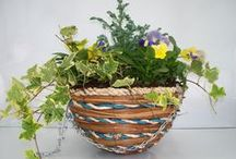 AUTUMN PLANTERS 2013 / Planters and Hanging Baskets