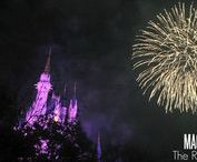 Celebrating at Walt Disney World / A look at the various ways to celebrate your runDisney accomplishment at Walt Disney World!