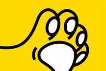 Zdrowe i Szczere Łapy / bo AndaVet dba o zdrowie psiaków
