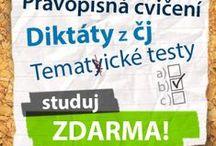 čeština - Czech language