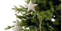 Vianoce 2016 / A sú tu opäť sviatky. Mali by byť síce plné pohody a pokoja, ale bývajú skôr hektické. Poďte sa pozrieť, ako vytvoríte slávnostnú a hrejivú atmosféru bez toho, aby vás to stálo veľa peňazí a energie.
