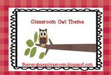 Classroom owls theme / by Sue Schueller