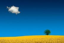 Glorious Sky! / by Marie Preston
